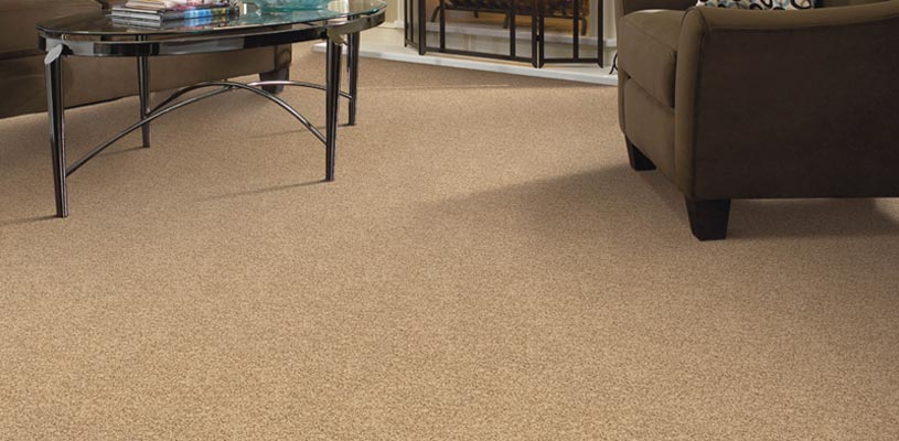 Carpet and Area Rug Cleaners Pensacola FL