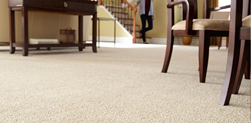 Carpet and Area Rug Cleaners Fort Walton Beach, FL