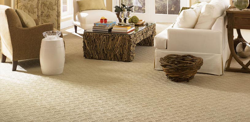 Carpet and Area Rug Cleaners Pensacola-FL