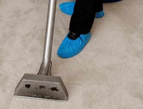 The Do's And Dont's Of Wool Carpet Cleaning And Care